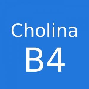 Cholina B4