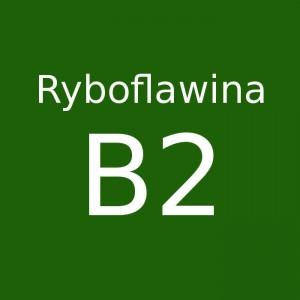 Ryboflawina B2
