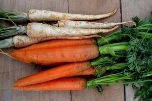 Warzywa korzenne