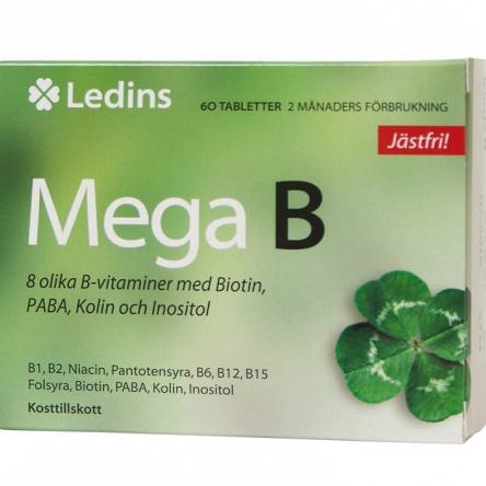 large_Mega-B-Kompleks-witamin-B-kwas-pangamowy-panagmetyna-witamina-b15